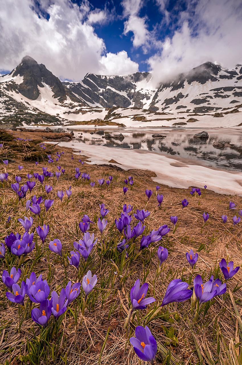 Пролетни динамики | Author Yuliyan Ivanov - Julius | PHOTO FORUM