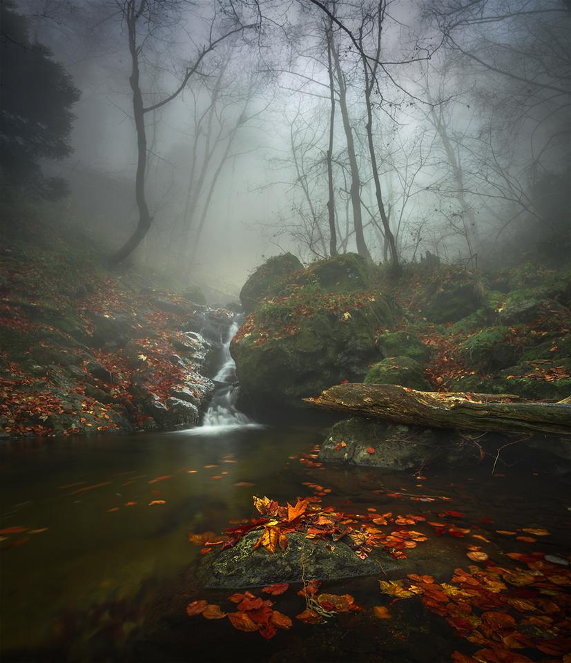 Photo in Landscape   Author Alexander Alexandrov - sandart   PHOTO FORUM