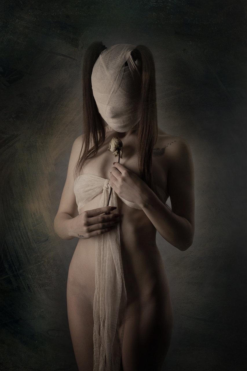 Цветето | Author Angel Nenov - Nenov | PHOTO FORUM