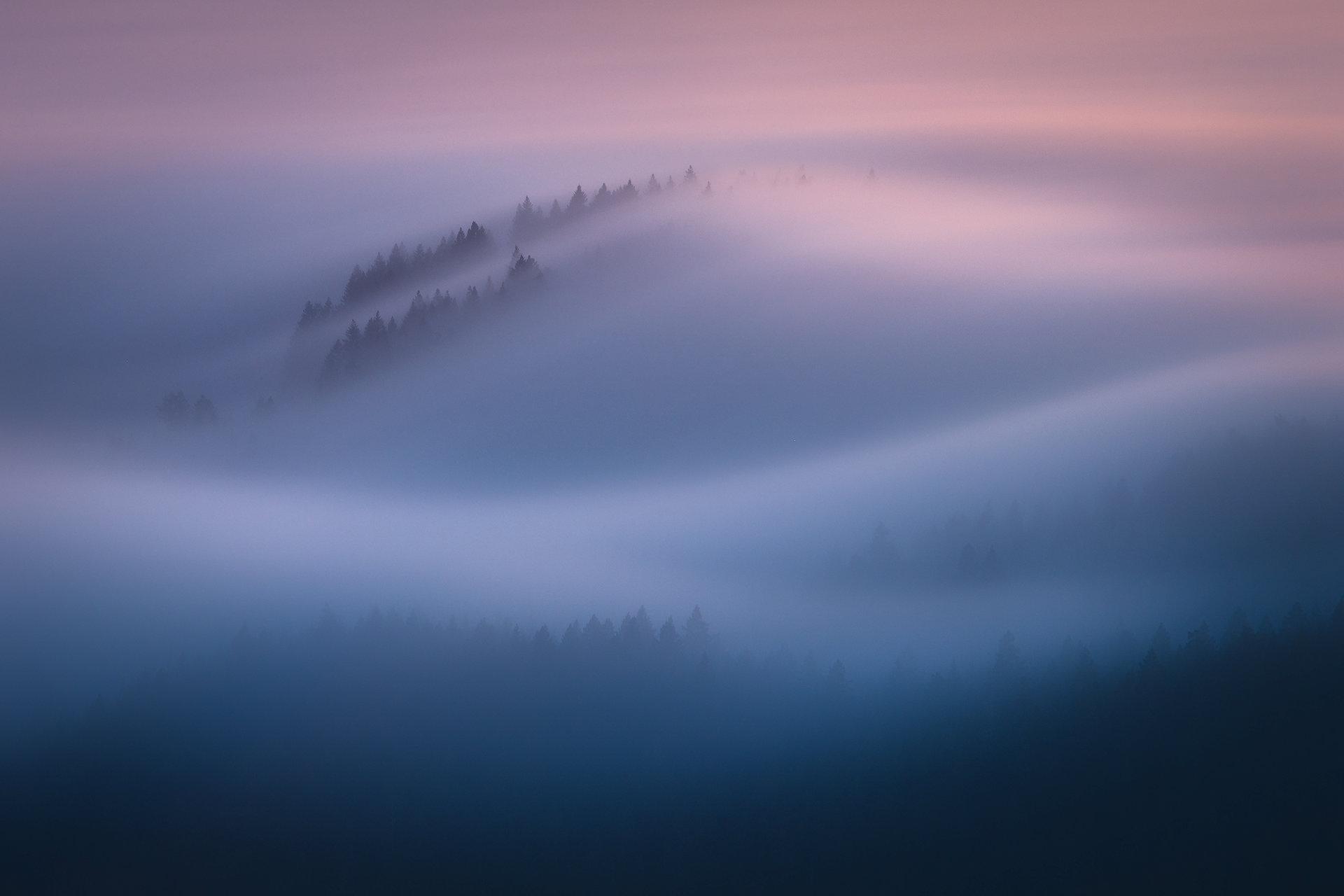 Karl the Fog 1/5 | Author Remo Daut - wallburn | PHOTO FORUM