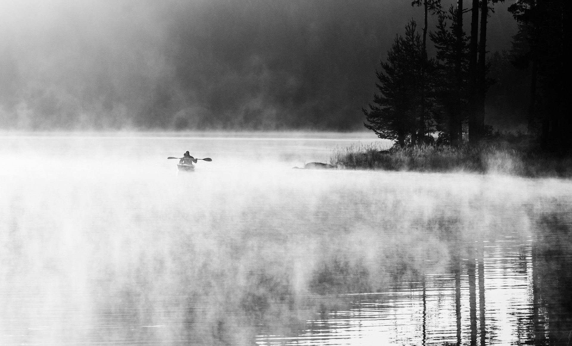 Photo in Everything else | Author Nadezhda Raycheva - sunnyhope | PHOTO FORUM