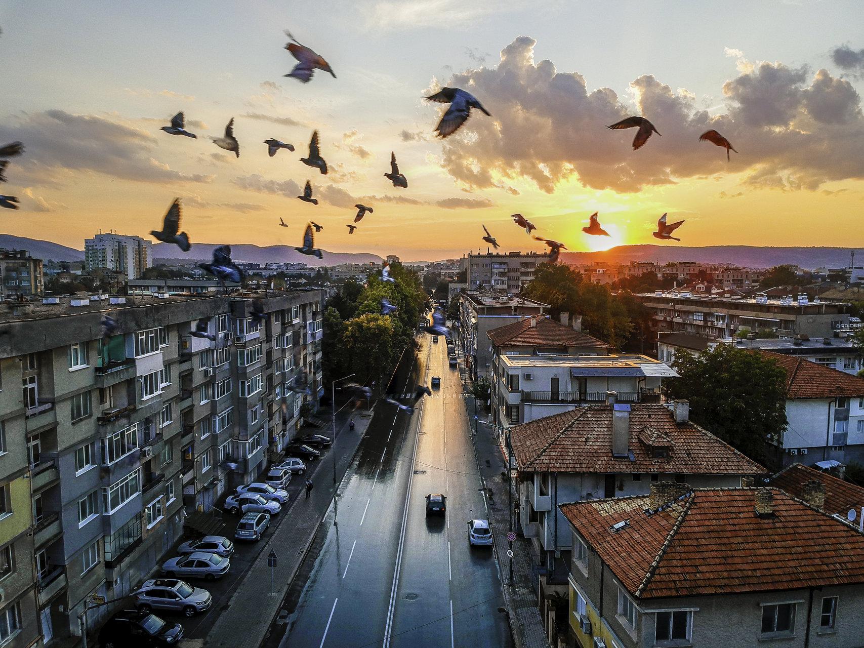 Залезите след дъжд са най-красиви!   Author Vladislav Rusev - vl.rusev   PHOTO FORUM