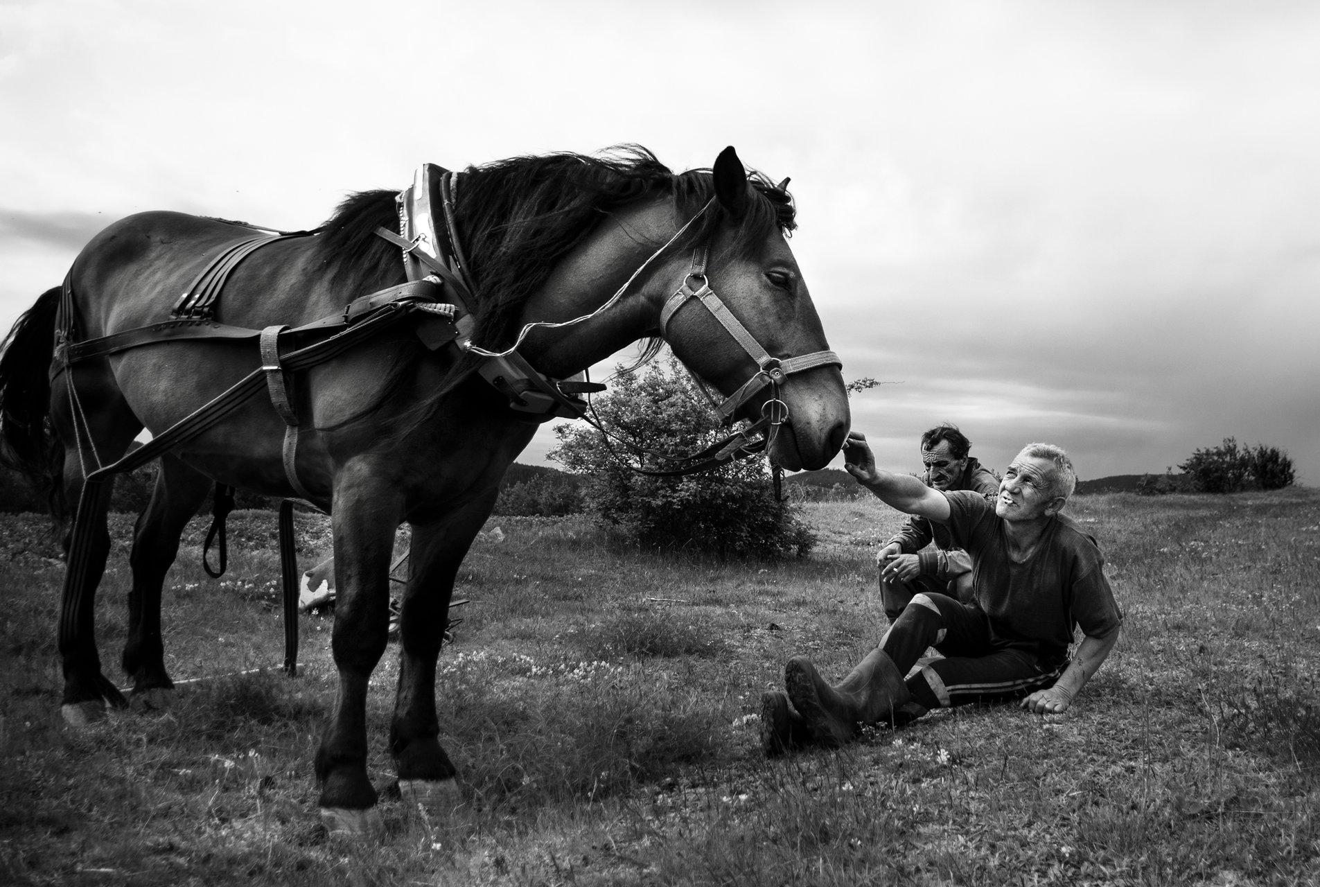 Photo in Daily round | Author Ilina Taneva - Инка | PHOTO FORUM