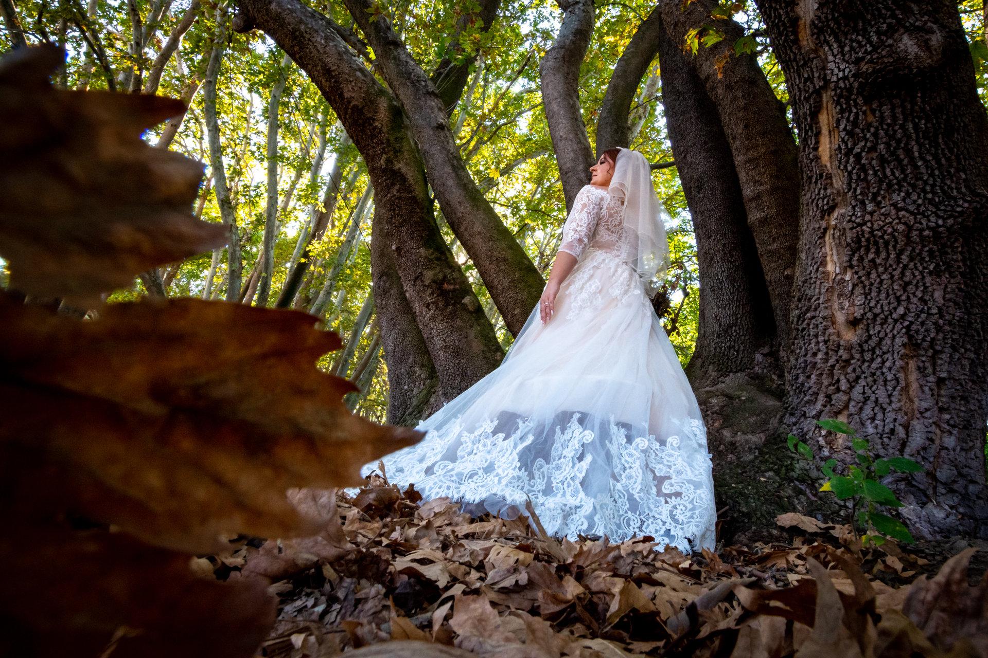 Photo in Wedding | Author Nikola Zafirov - starswriter | PHOTO FORUM