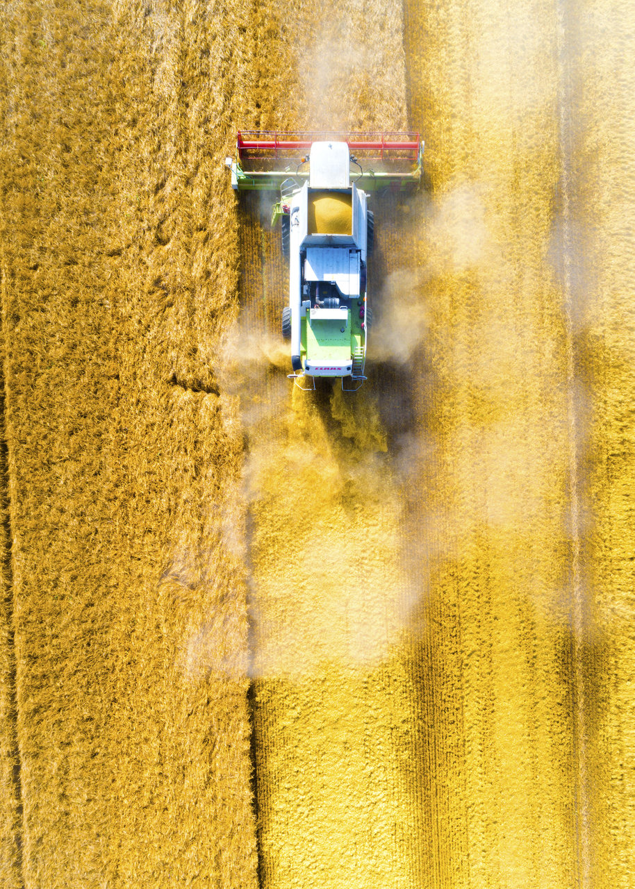 Gold Rush | Author Nikolaj Naumov - NickNaumov | PHOTO FORUM