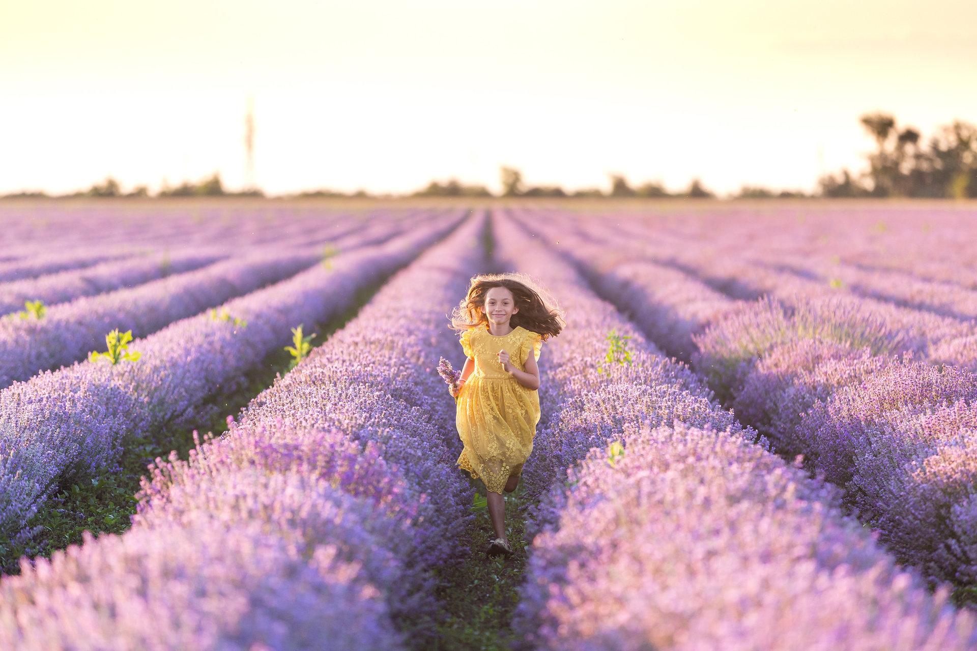 С аромат на лавандула | Author Radostina Savoya - tututina | PHOTO FORUM