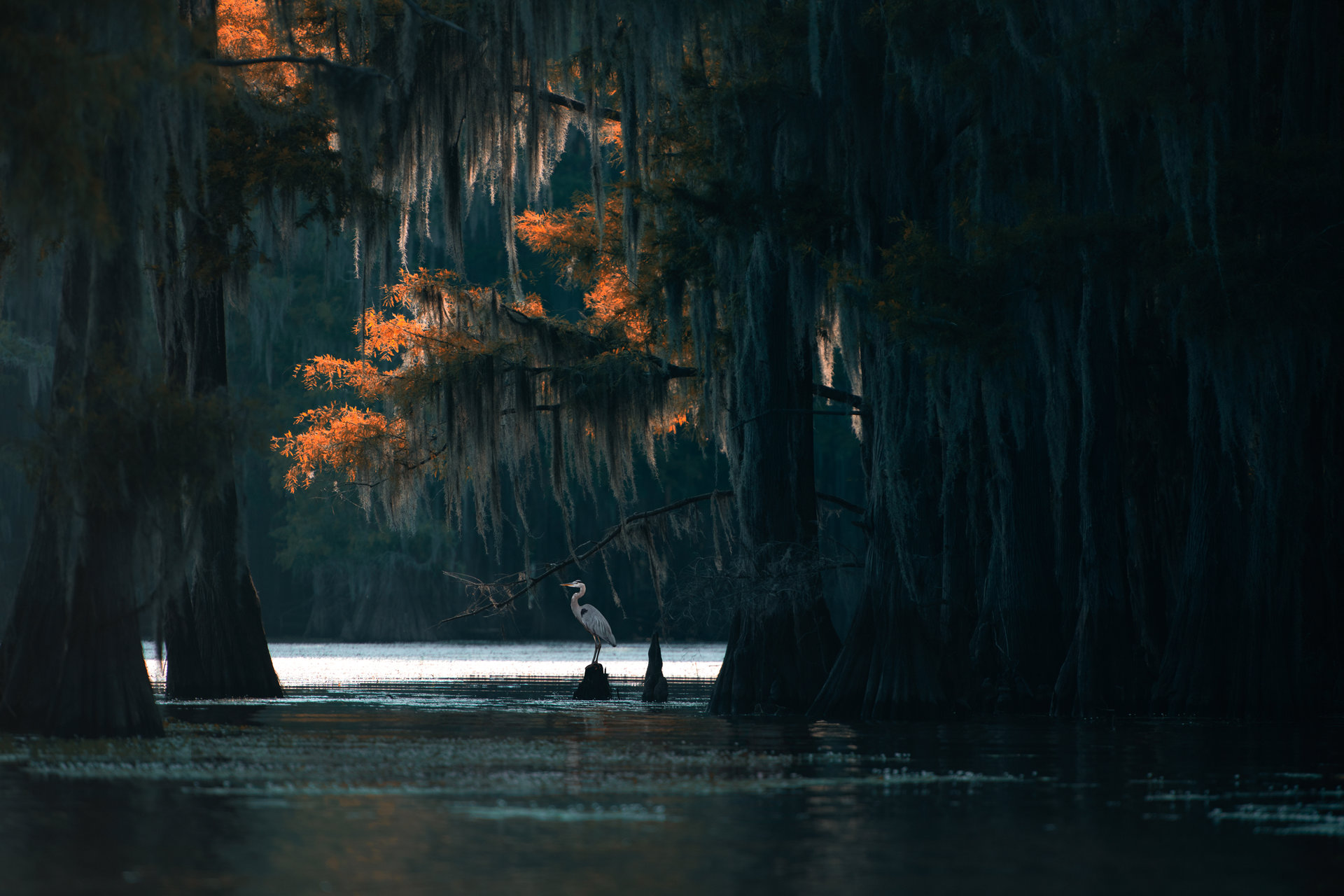 Photo in Landscape | Author Zhoro  - HITTHEROAD | PHOTO FORUM