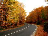 Пътят през есента ; comments:6