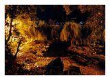 Охридското езеро ; comments:8