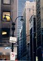 Fifth Ave. NY City ; comments:7