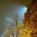 Късна есен - първи сняг ; comments:77