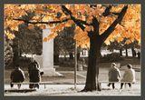 Есенни настроения ; comments:23