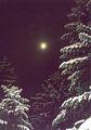 Зимна Луна ; comments:3