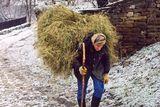 Зима иде ; comments:6