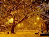 Зимна вечер 1 ; comments:4