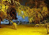 Зимна вечер 3 ; comments:9