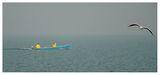 рибари ; comments:4
