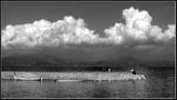 облаци ; comments:8