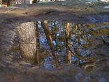 Огледало ; comments:11