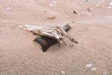 Брегът на скелетите, Намибия ; comments:34