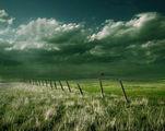 rain-making ; comments:72