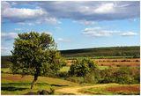 един Пейзаж за Народа ; comments:25