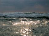 Златно море ; comments:28