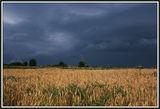 Буря ; comments:22