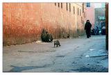 По улиците на Маракеш ; comments:32