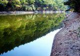 За водните дървета ; comments:16