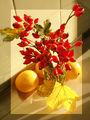 Есен в чаша ; comments:23