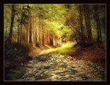 Старият път ; comments:60