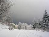 Зима ; comments:69