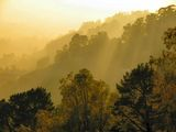 Мъглив залез ; comments:41
