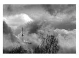 Кула Копитото ; comments:31
