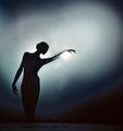 DANCE ; comments:46