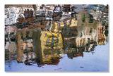 Цветове от Търново ; comments:48