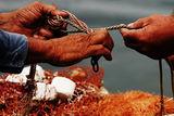Рибари ; comments:19