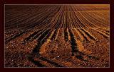 Земята , която ни храни - 5 ; comments:29