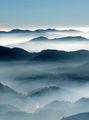 mist ; comments:58