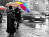 Дъждовно ; Comments:12