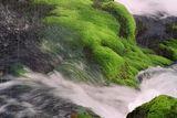 zaburzanata reka 2 ; comments:14