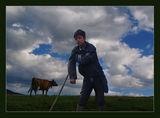 Малкият пастир ; comments:31