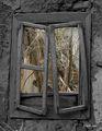 през прозореца ; comments:45