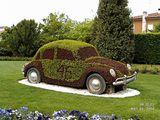VW ; comments:42