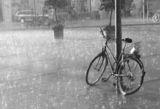 Rainy ; comments:174