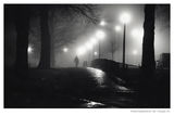 Man in Fog ; comments:45