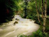 стара река ; comments:56