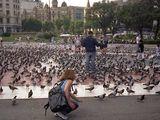 Площад Каталуня ; comments:18