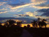 sunset2 ; comments:53